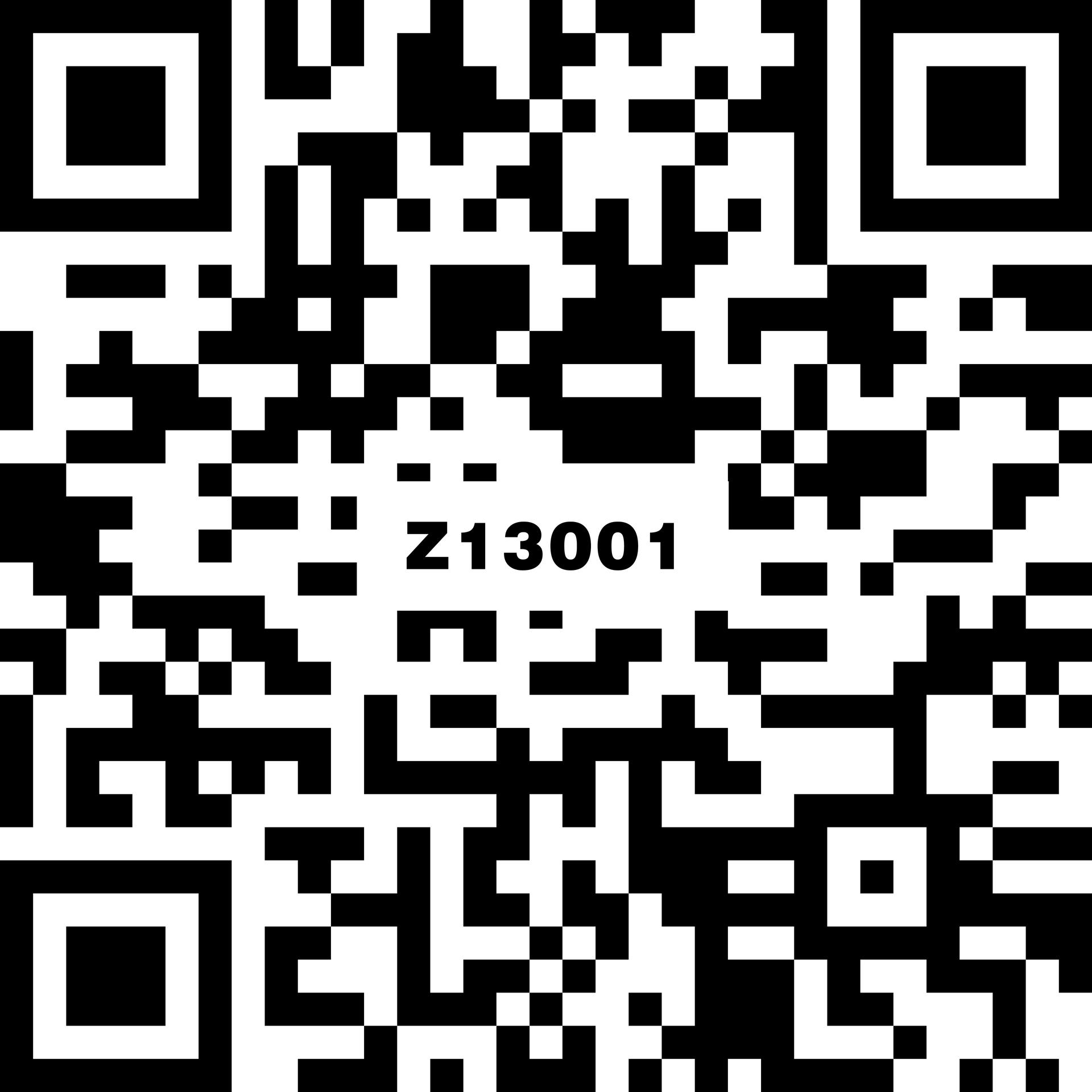 Z13001