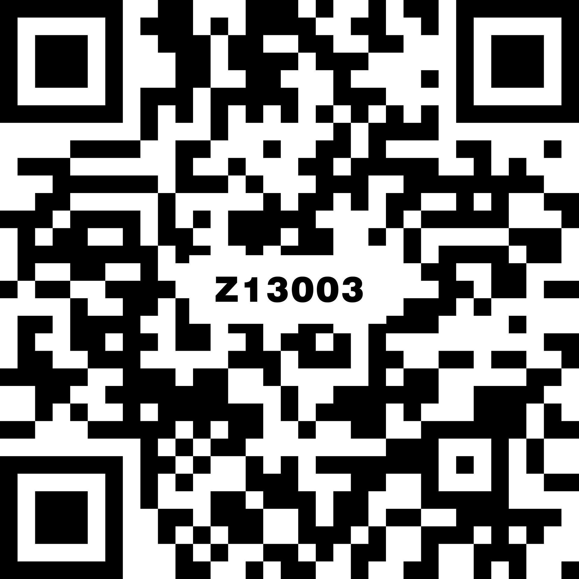Z13003