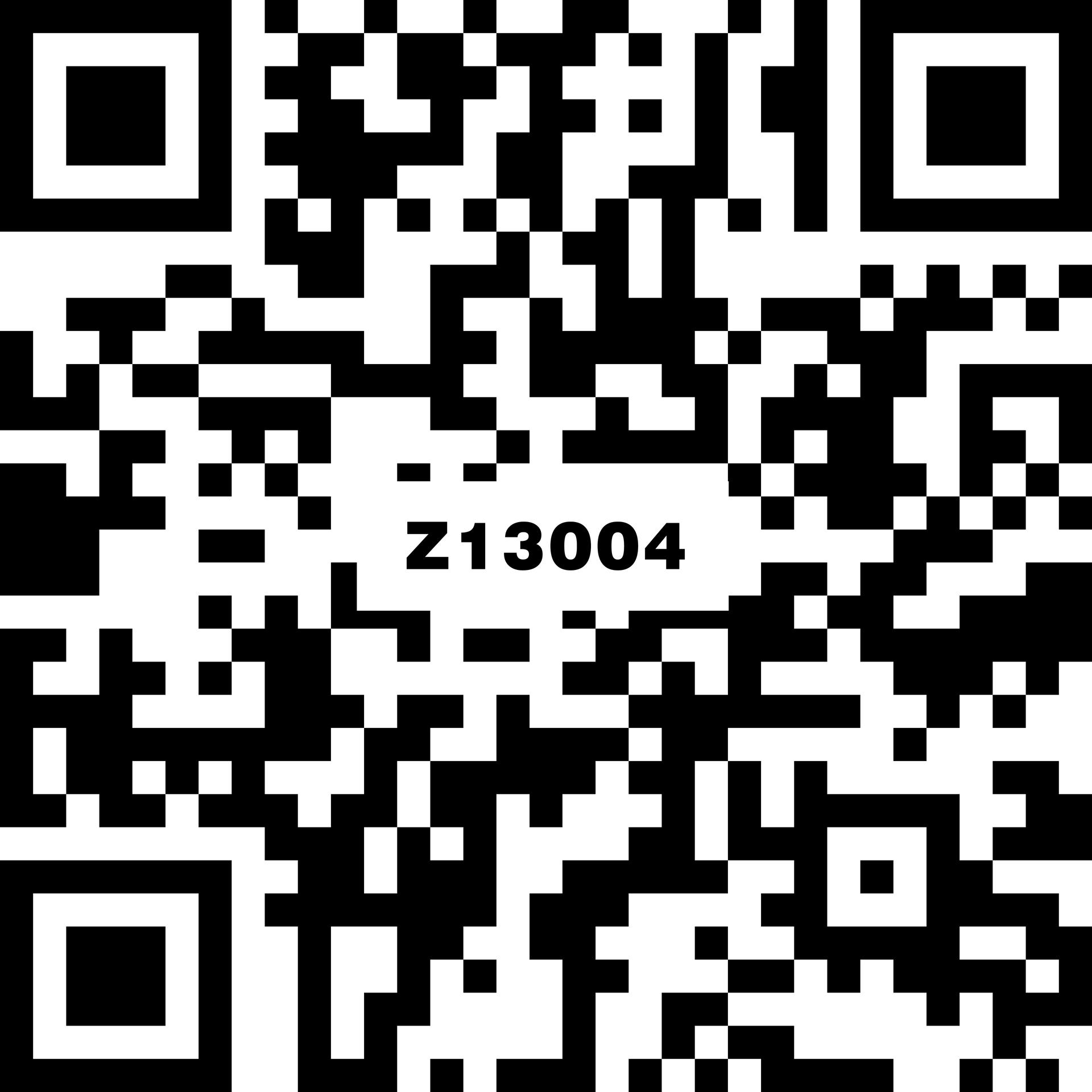 Z13004