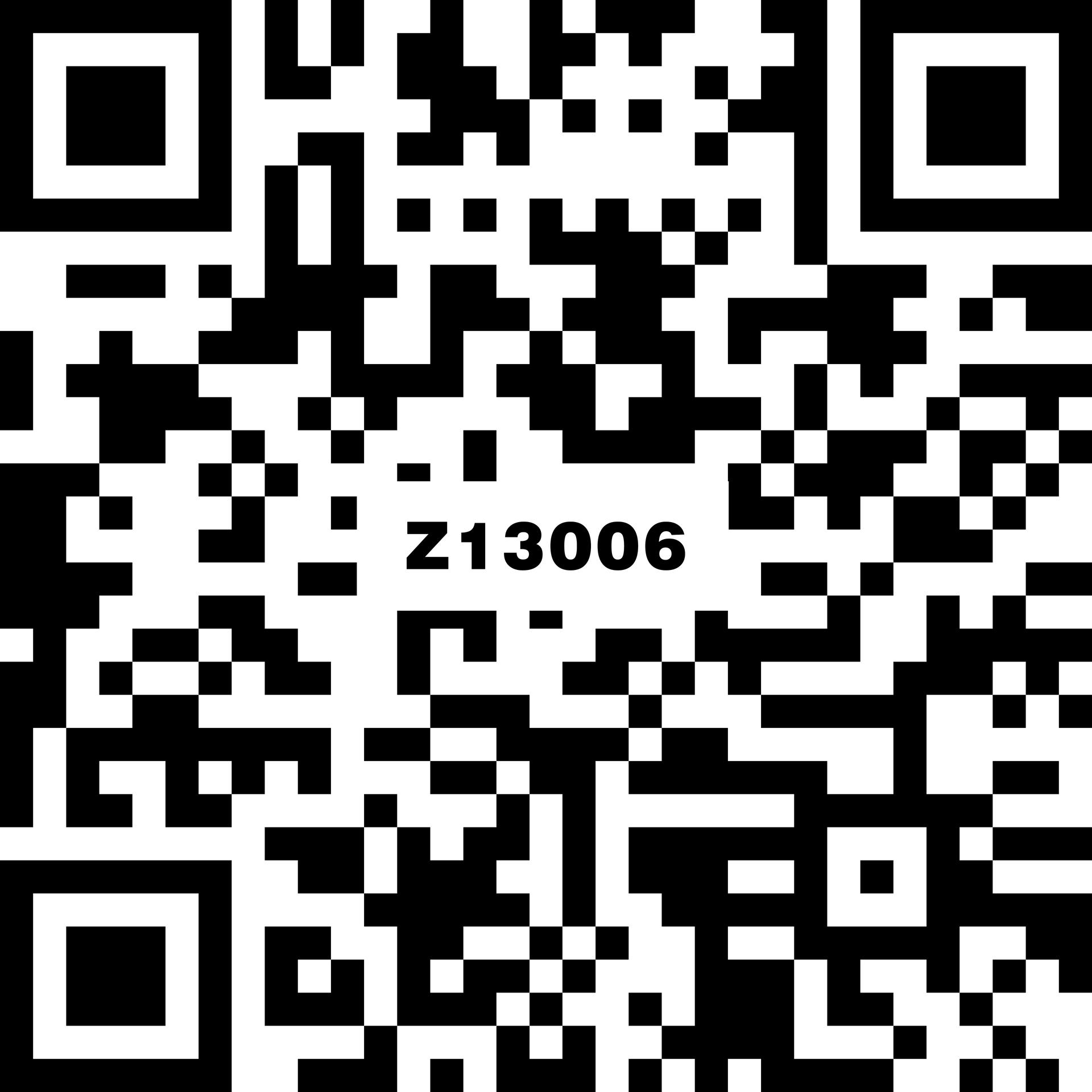Z13006