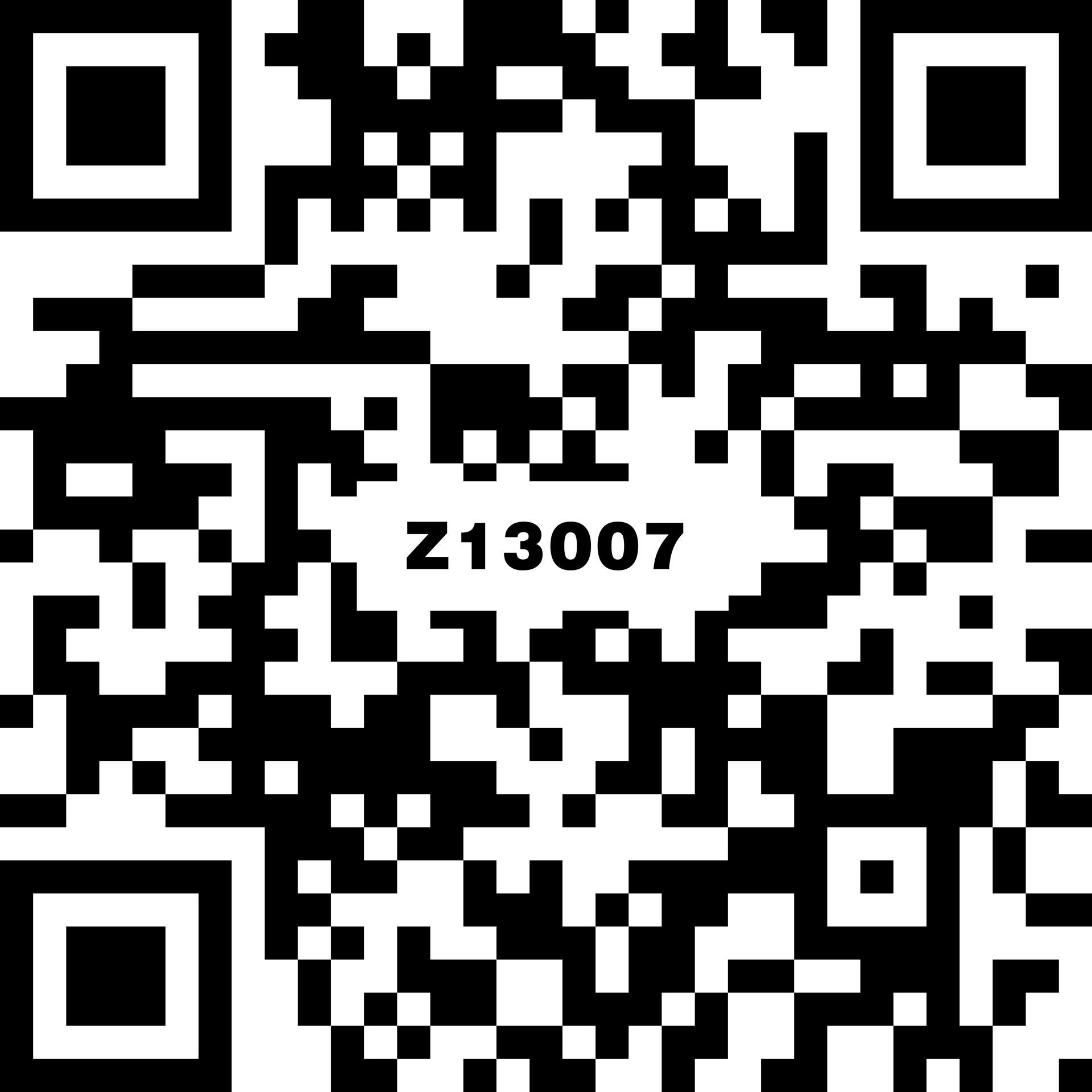 Z13007