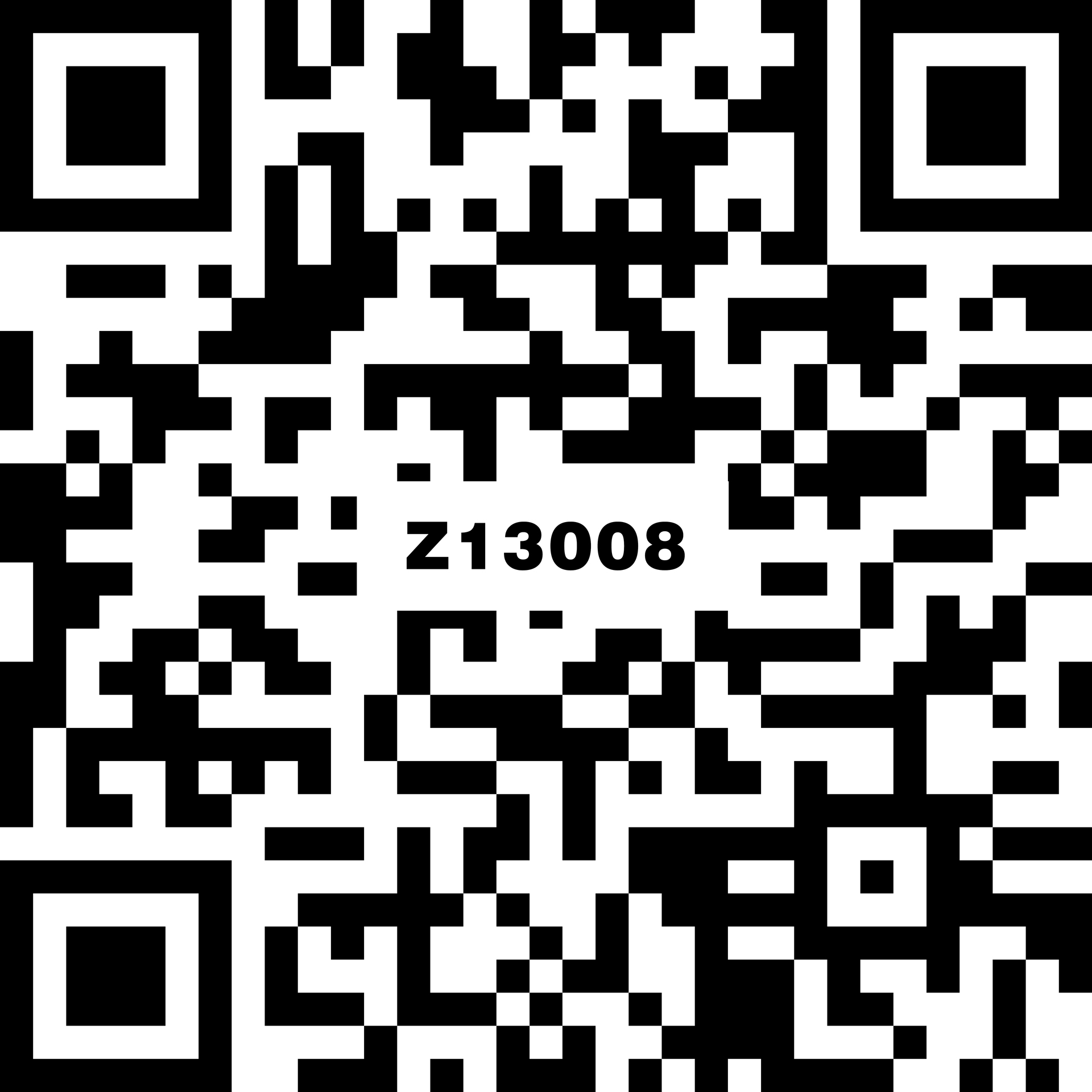 Z13008