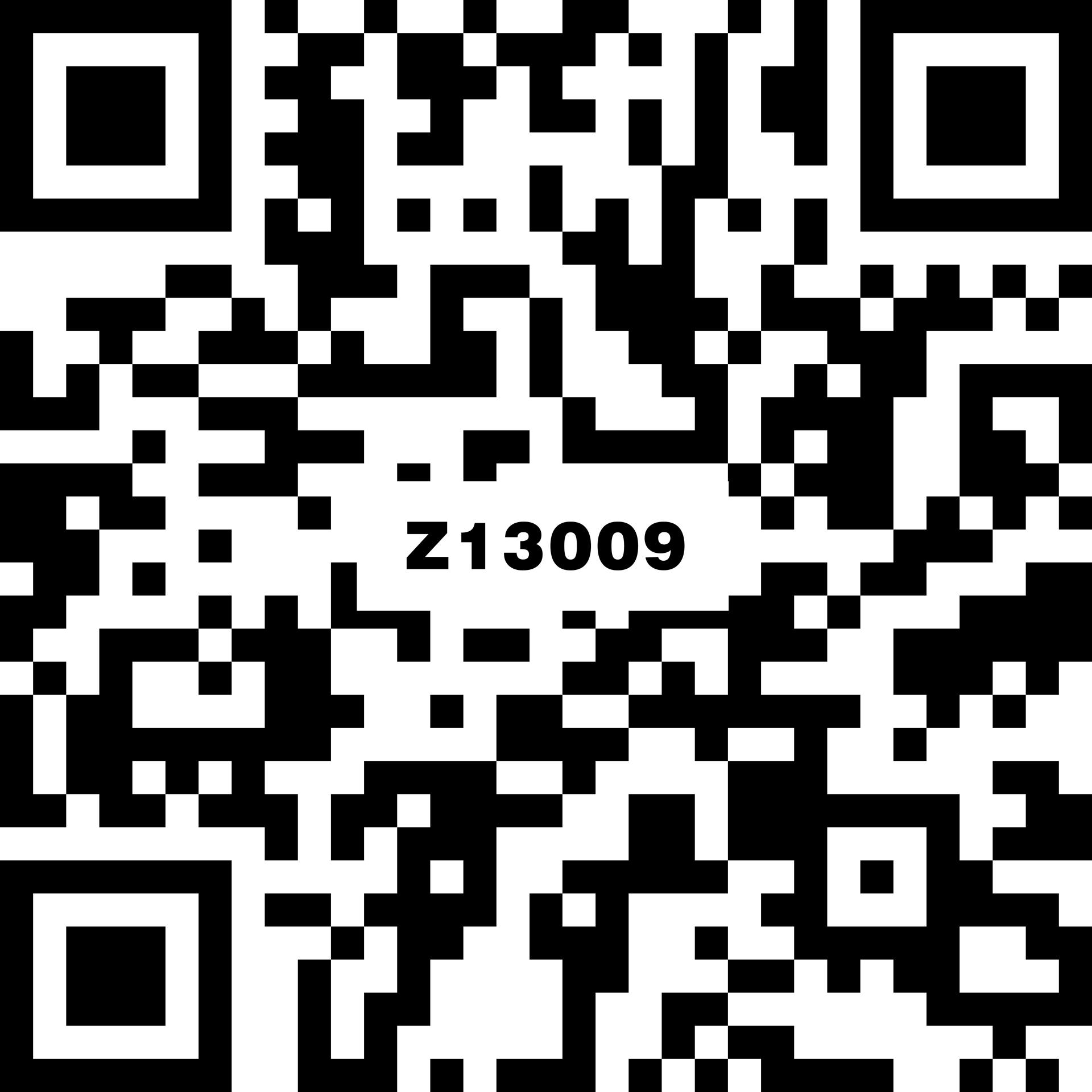 Z13009