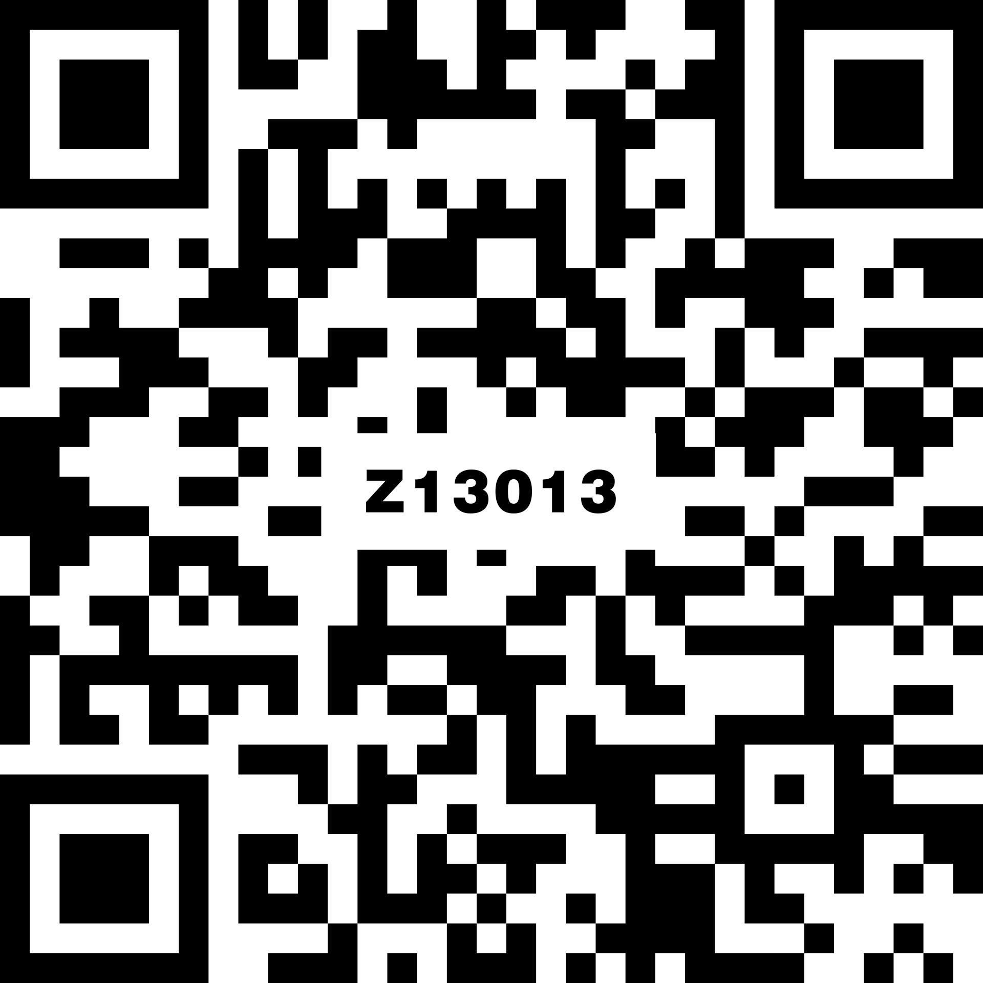 Z13013
