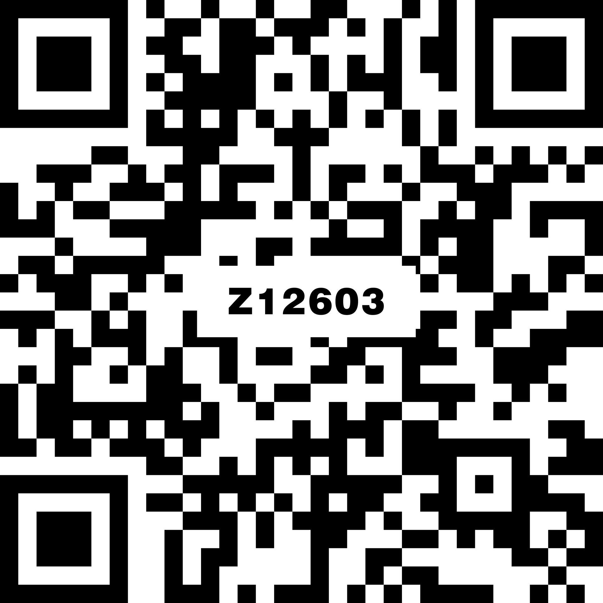 威尼斯 Z12603