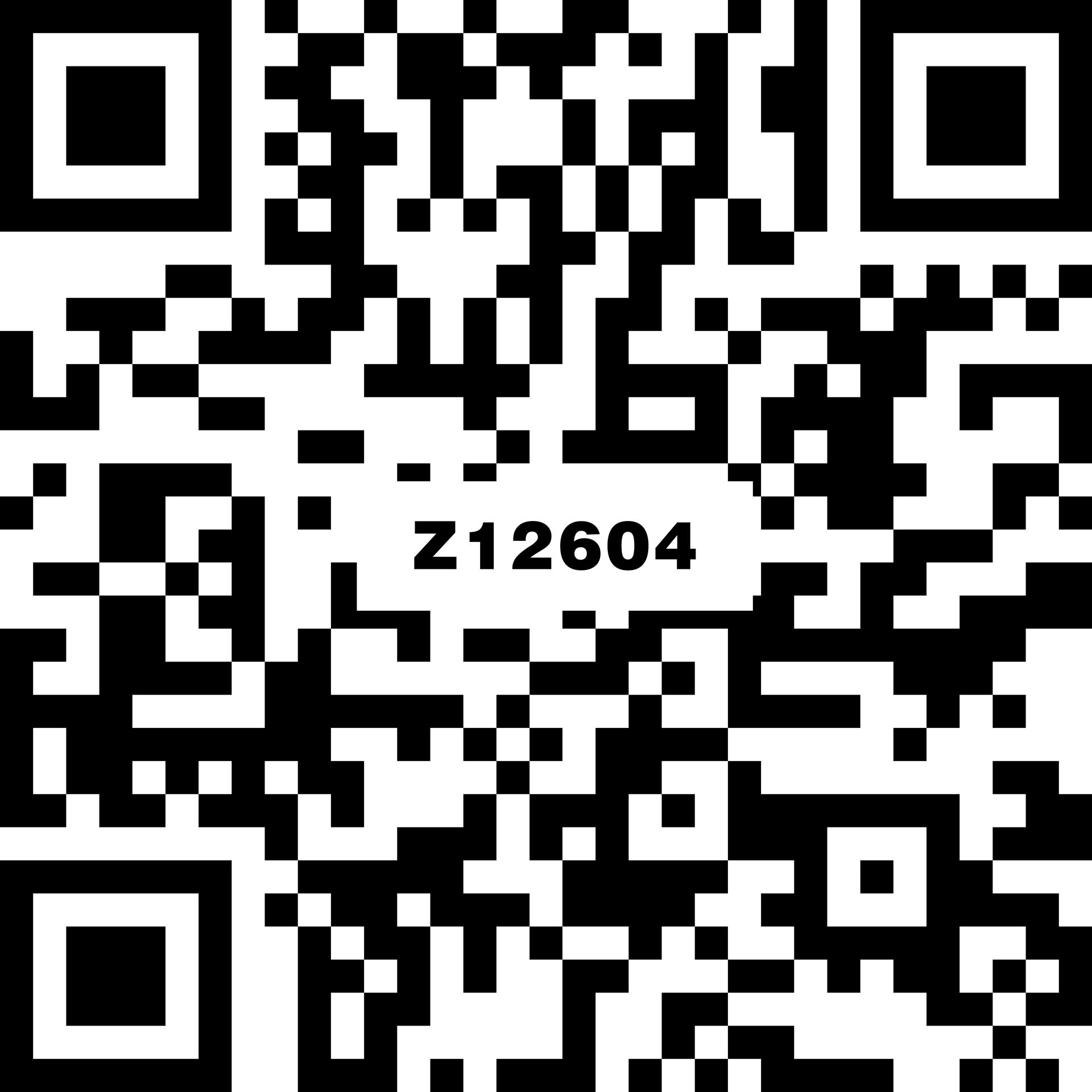 卡索灰 Z12604