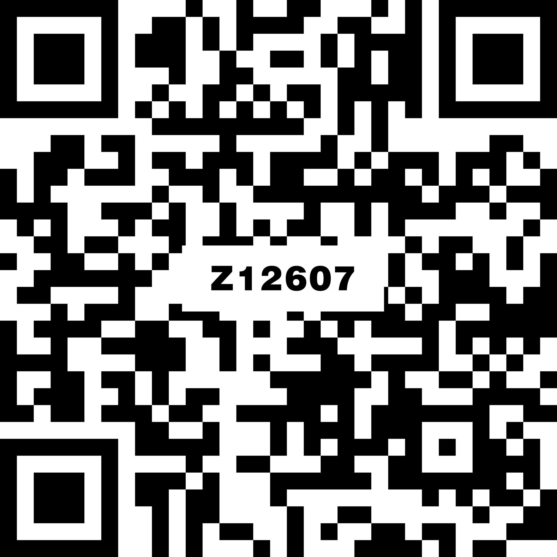 流金沙 Z12607
