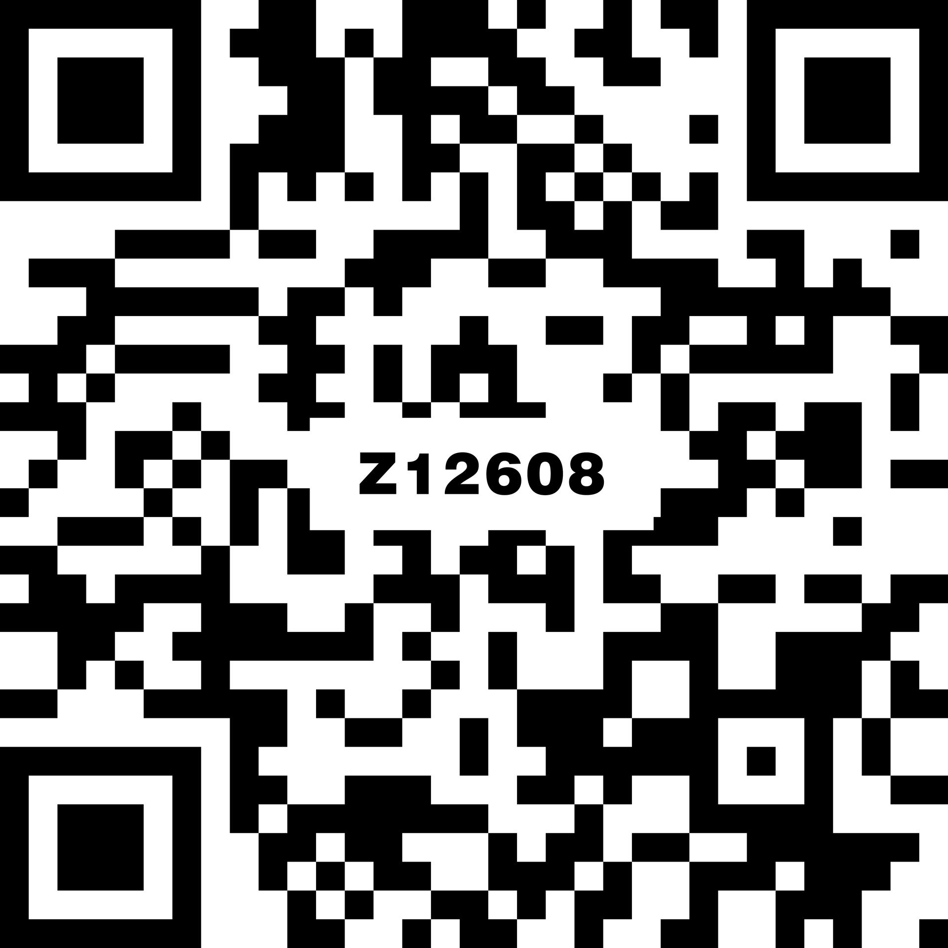 索馬里灰 Z12608