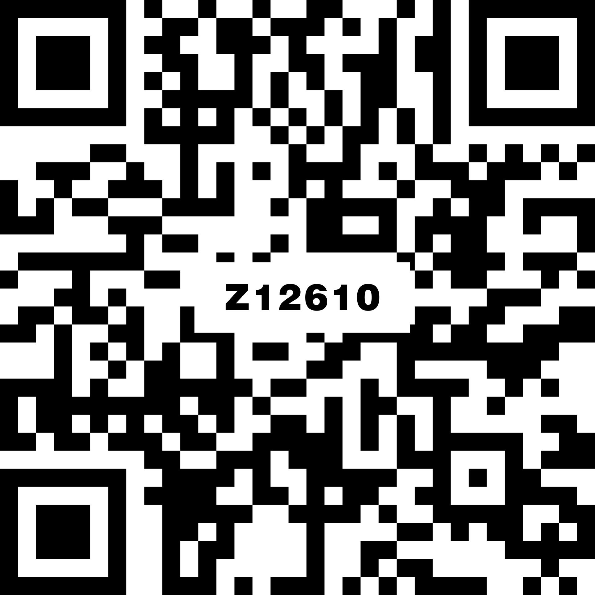 特朗普灰 Z12610