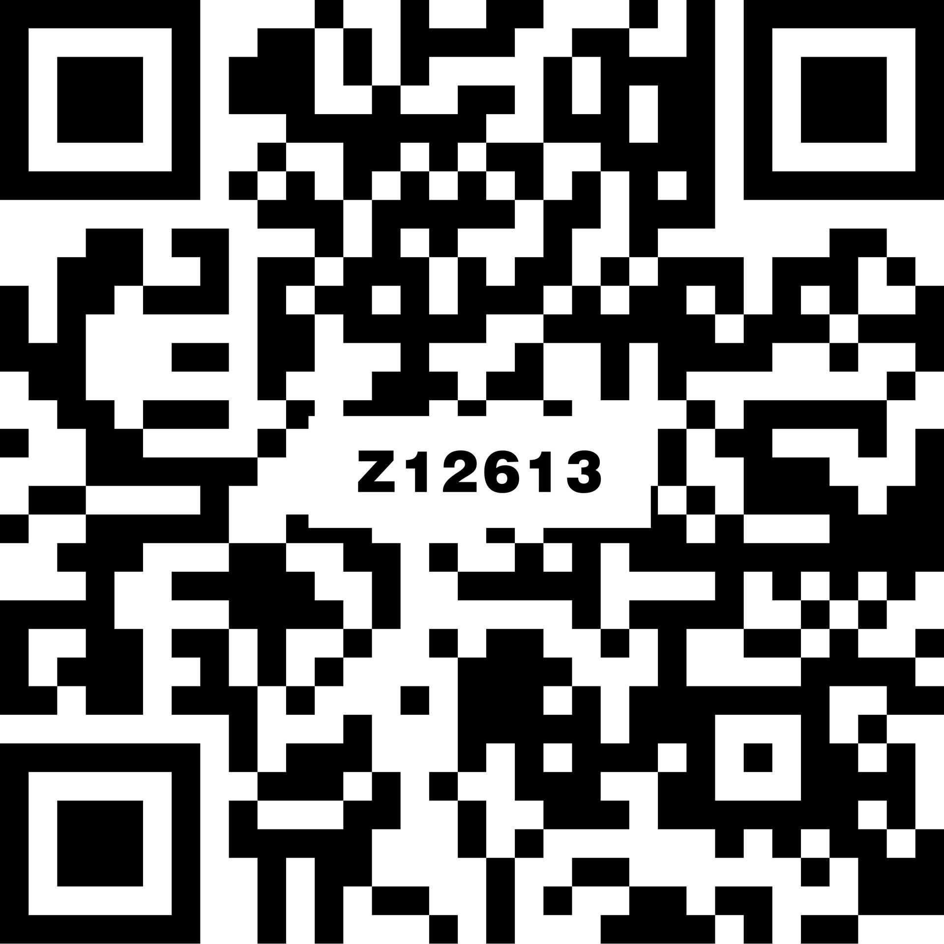 昆侖玉 Z12613