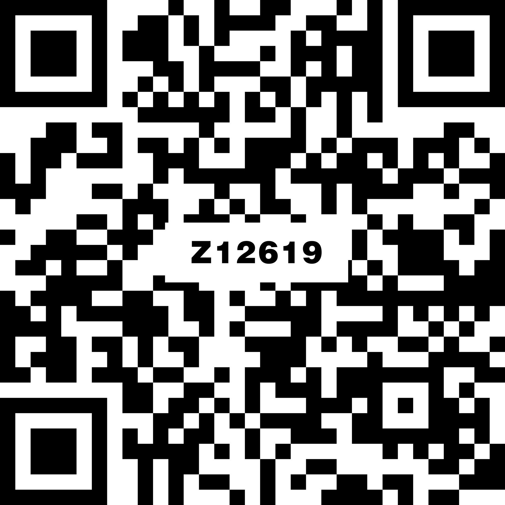 菲斯特石 Z12619