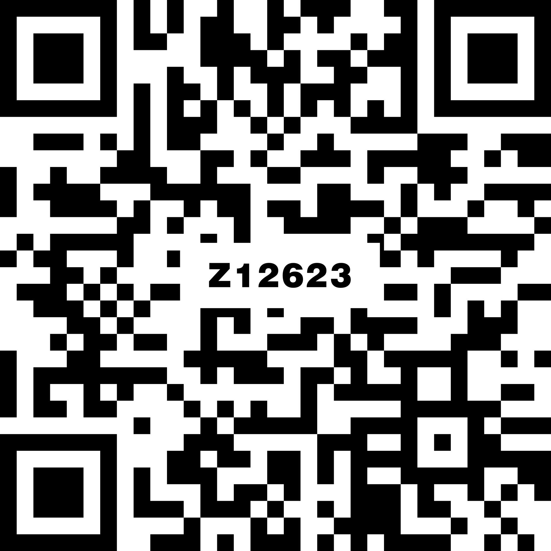 啡斯瑪深灰 Z12623C