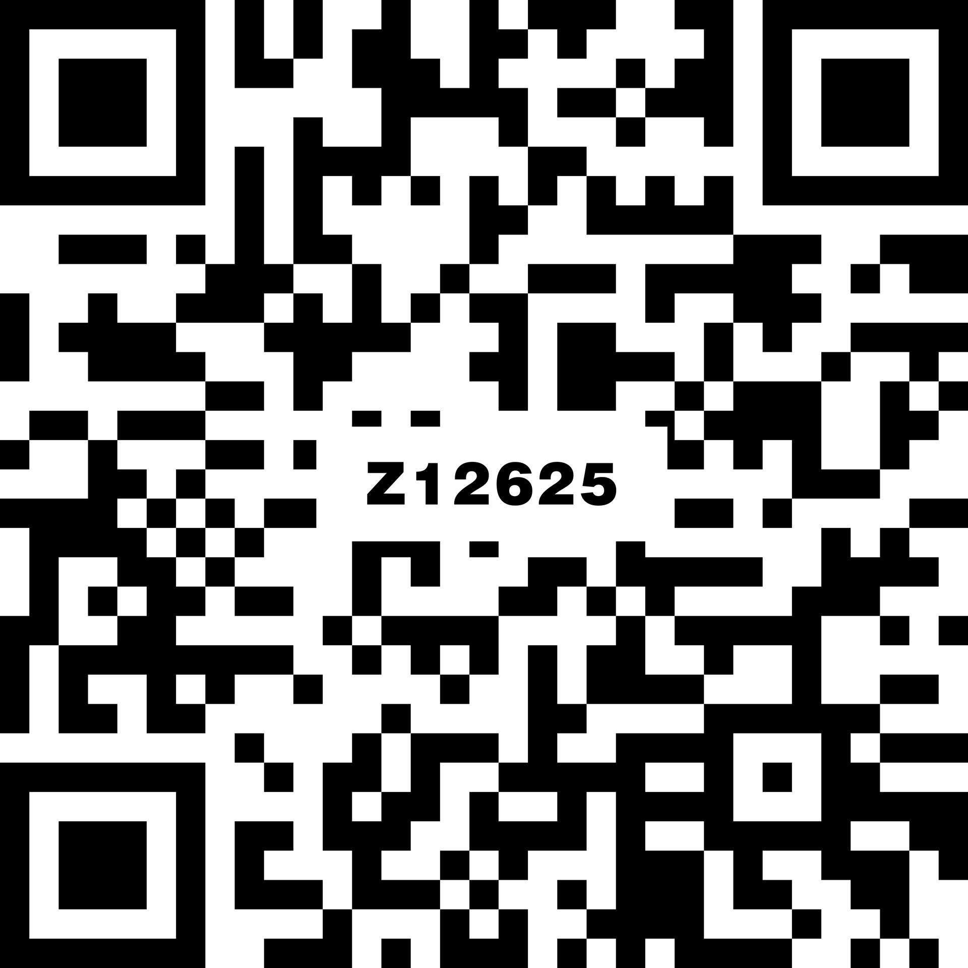 名爵淺灰 Z12625
