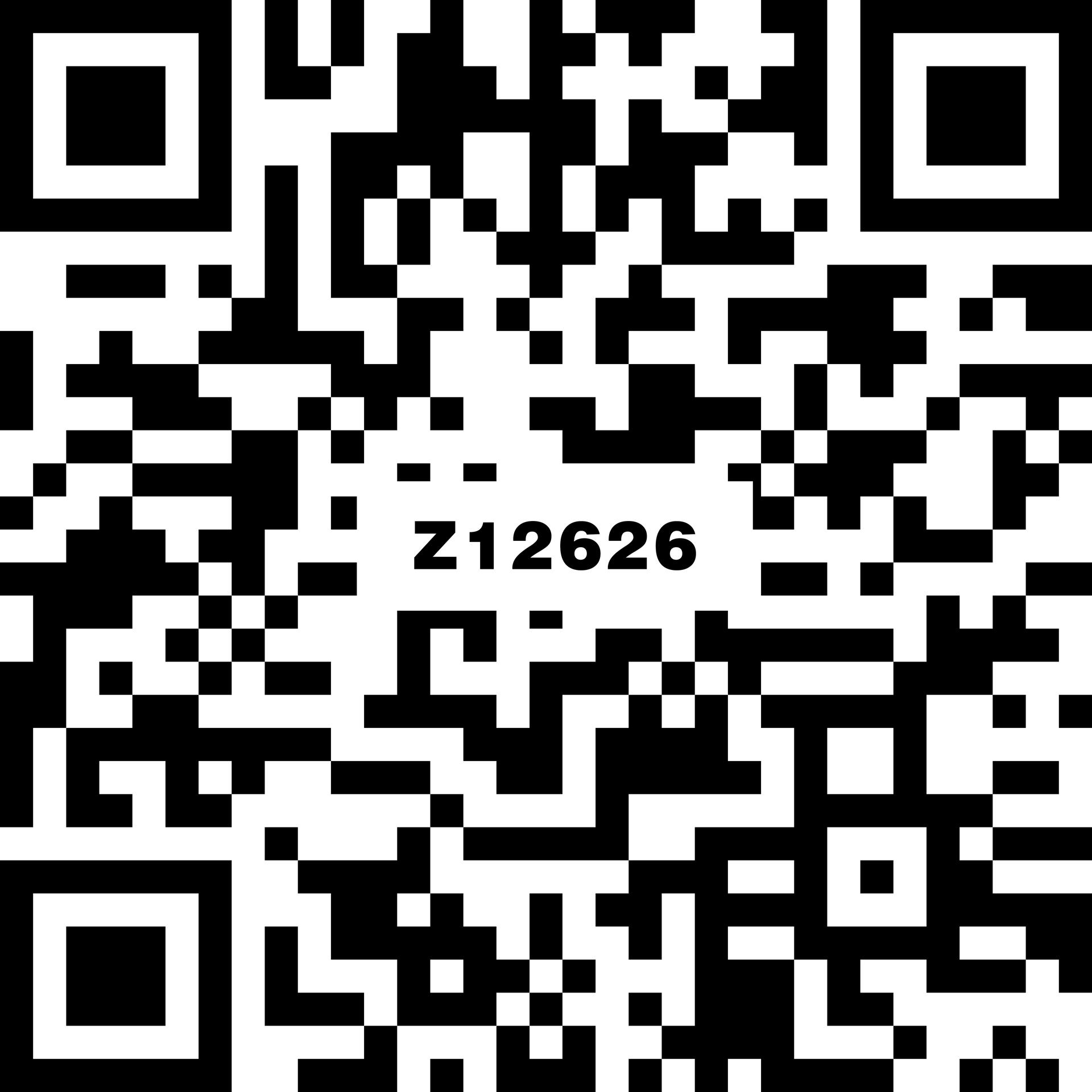 名爵中灰 Z12626