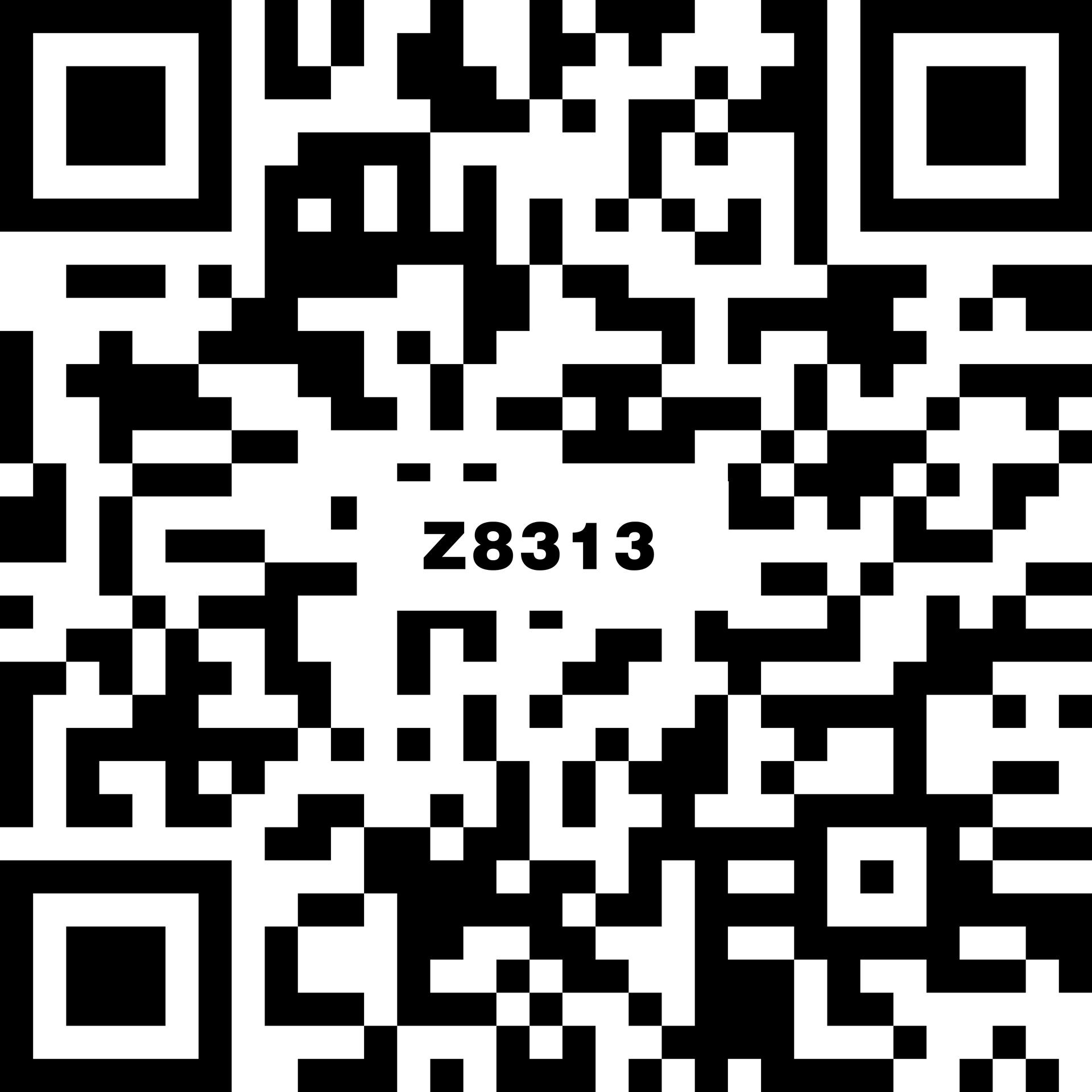 Z8313