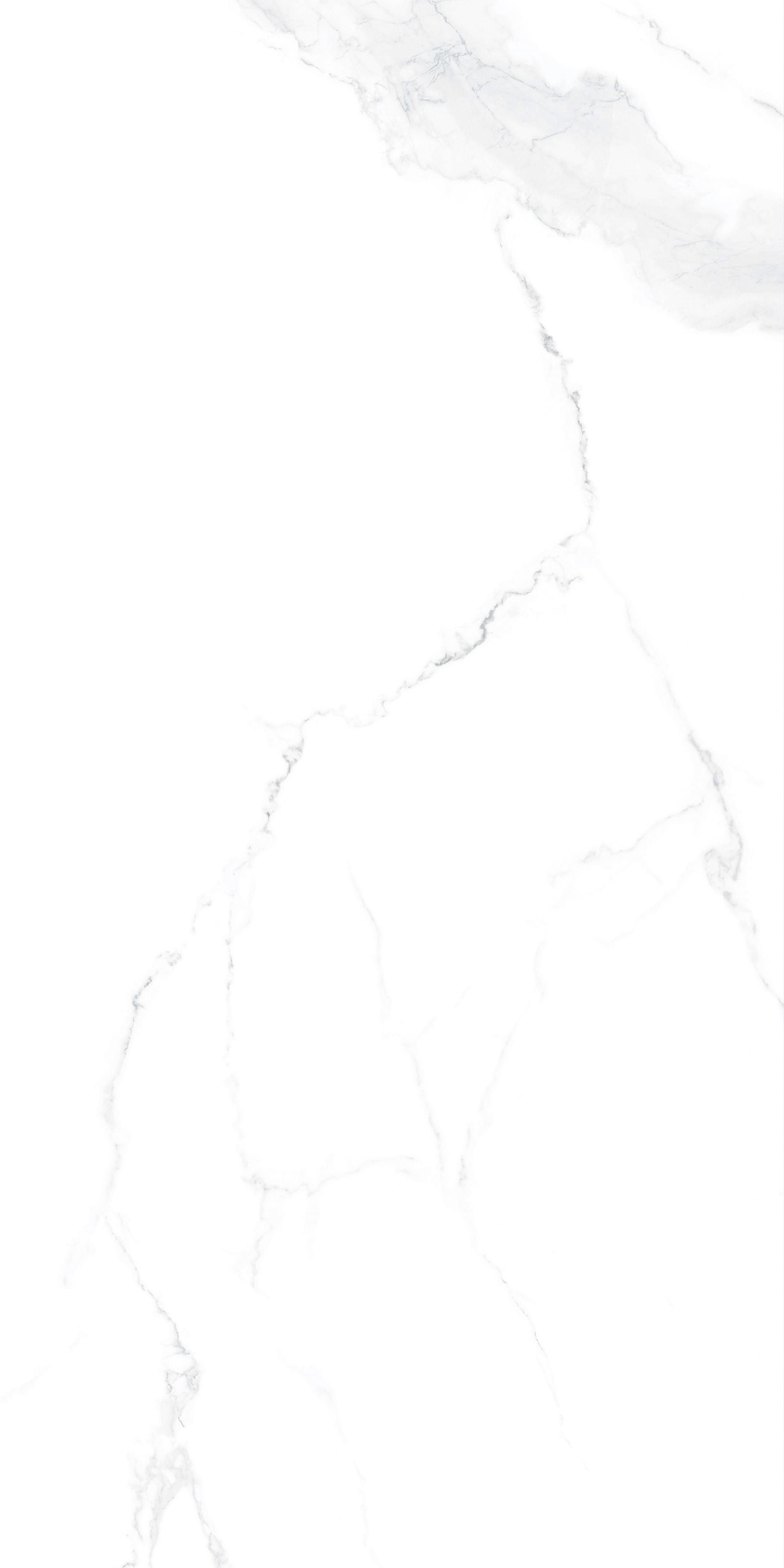 Z62D31拉納卡白