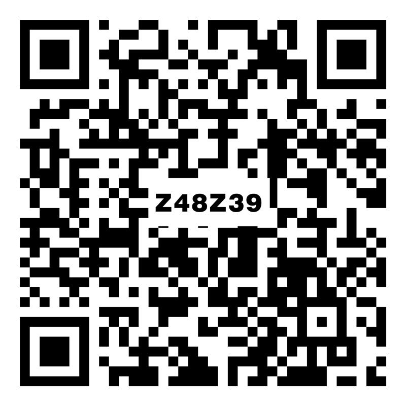 Z48Z39雅爾斯