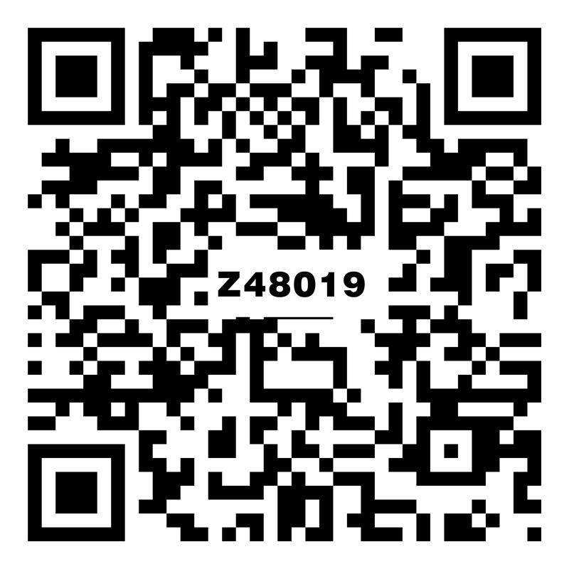 Z48019