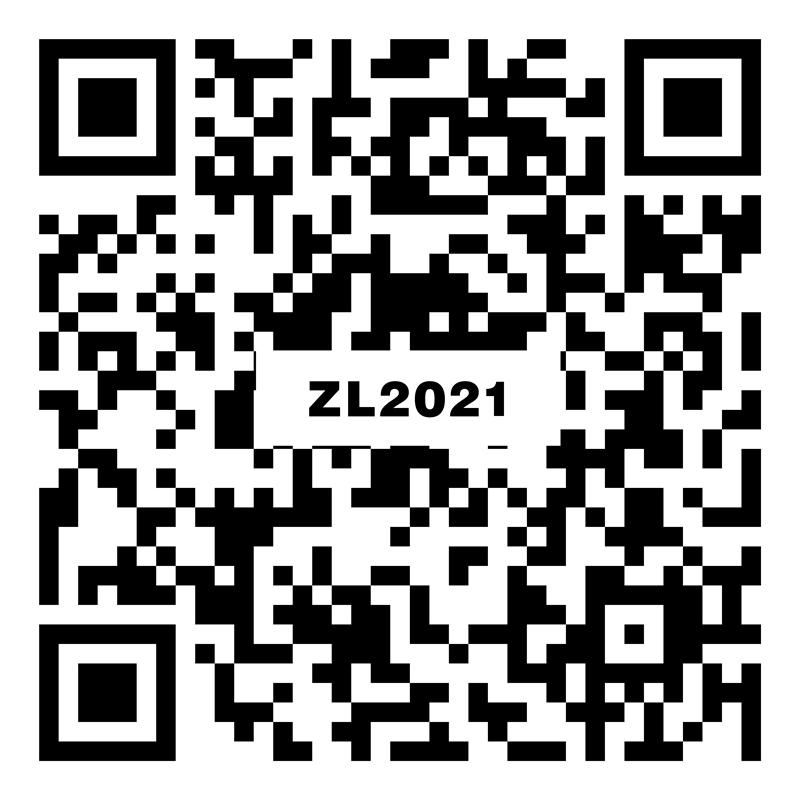 利斯塔灰 ZL2021