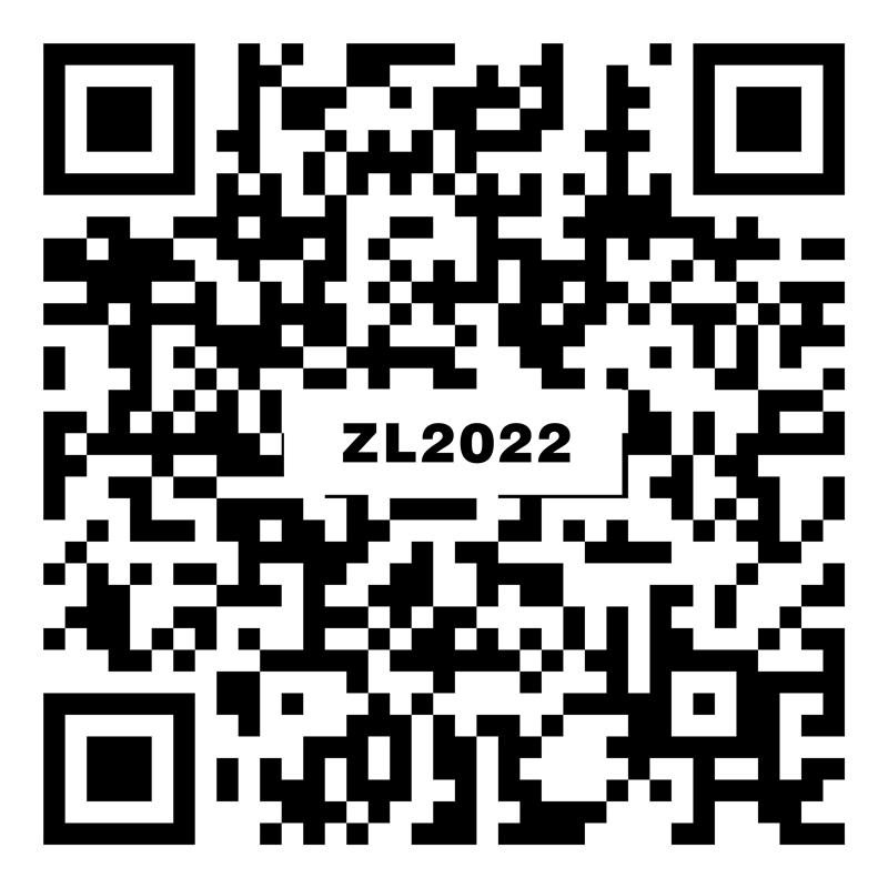 莫迪卡灰 ZL2022