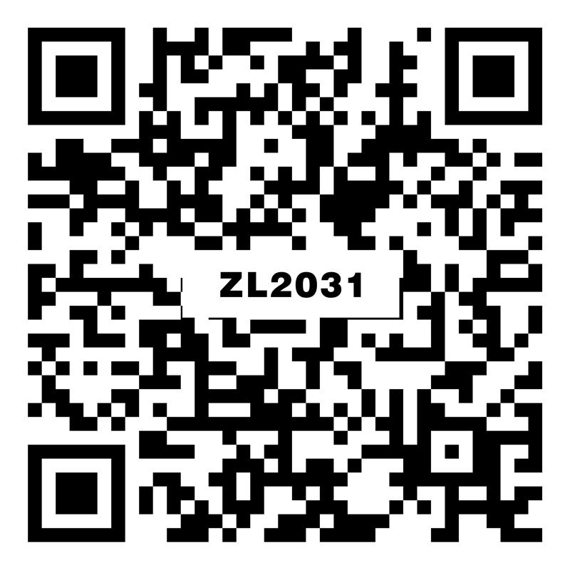 愛馬仕灰 ZL2031