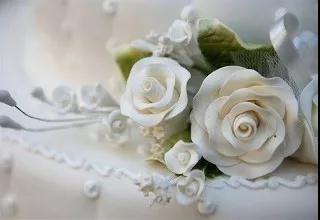 DG-3762,宛如白玫瑰,得不到的從來矜貴
