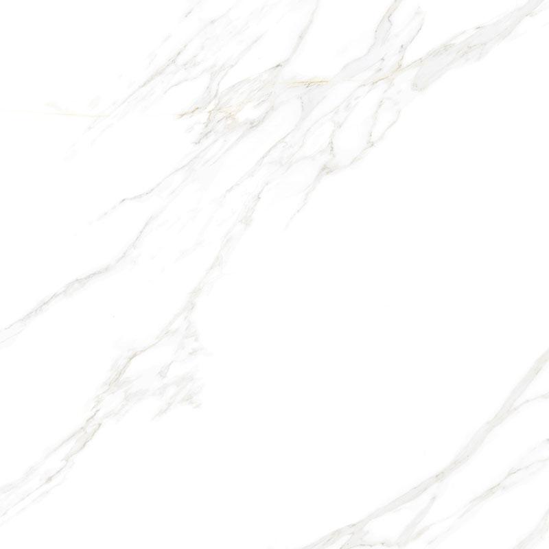 CGT8F57-W公爵白