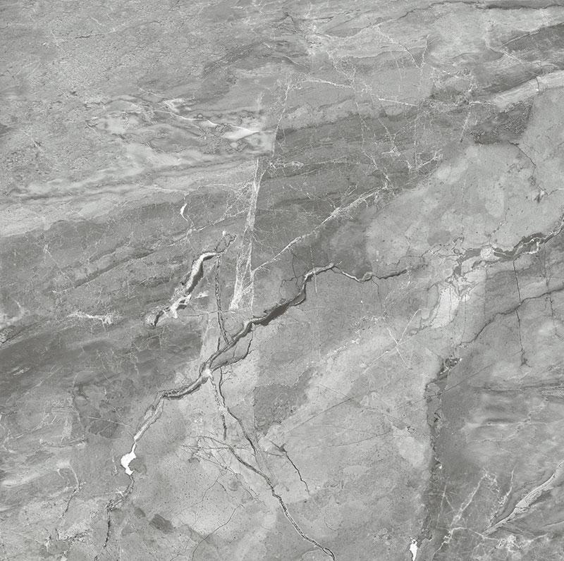 CTD8556-W 布迪亚灰