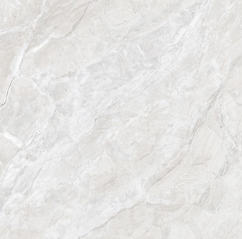 CTB8550-W 博洛尼亚灰