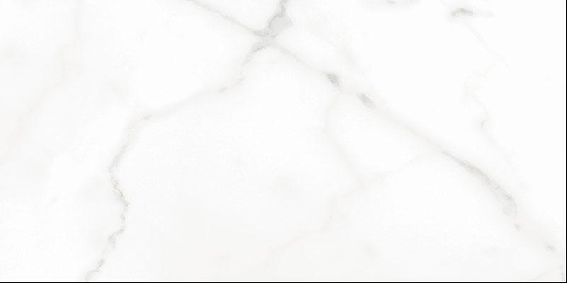 CFB306001