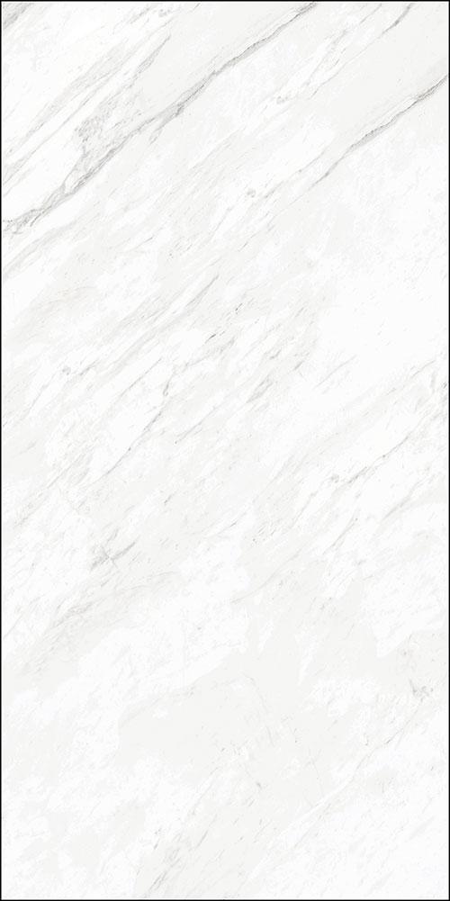 CYB122401雅士白