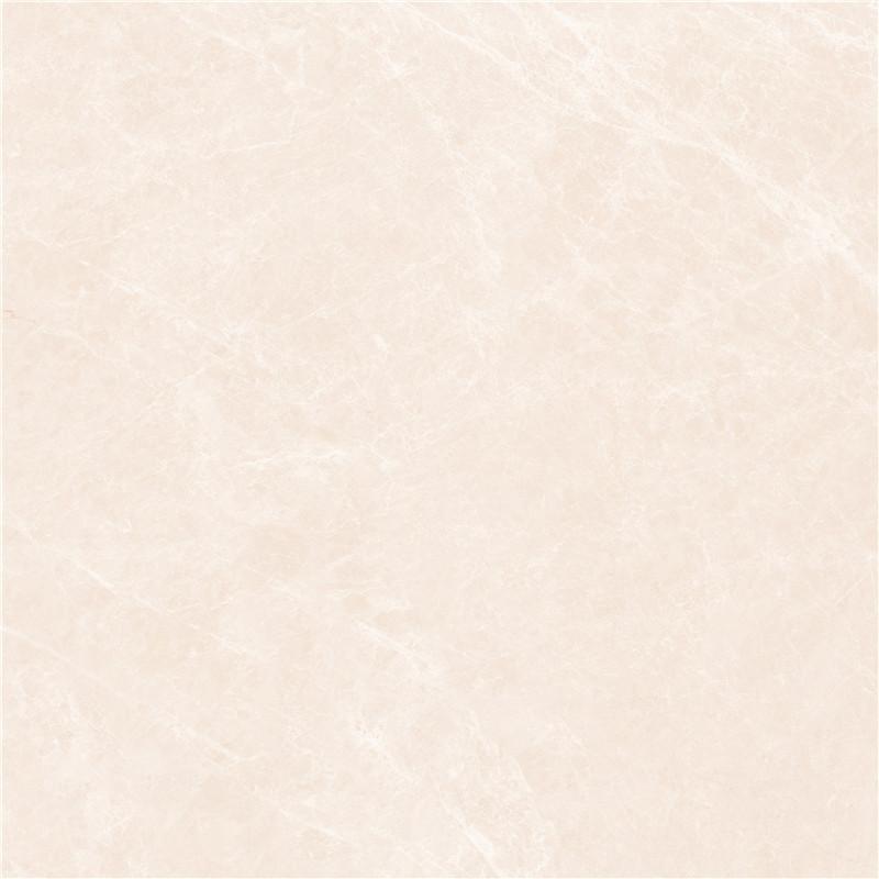 X1PA802110白玉兰