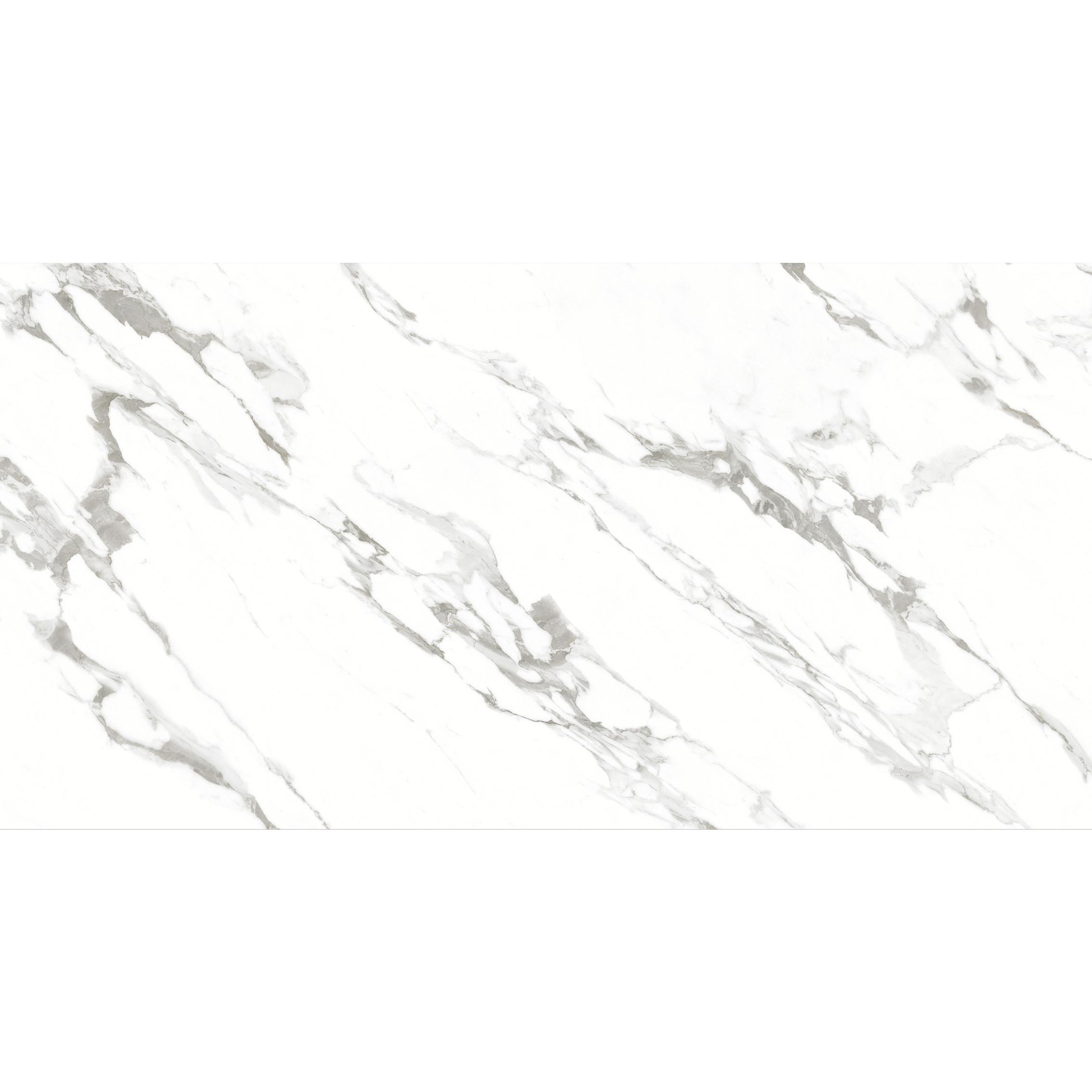 X1FD9182525Y大雪花白