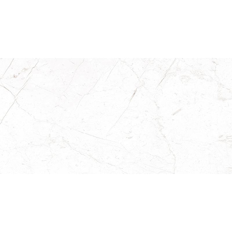 X1PA61201希腊伯爵白