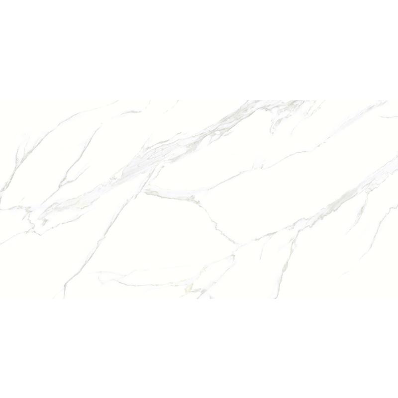 X1SD71506-6H 新鱼肚白