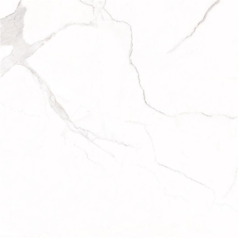 X1SD80801R-6H新鱼肚白