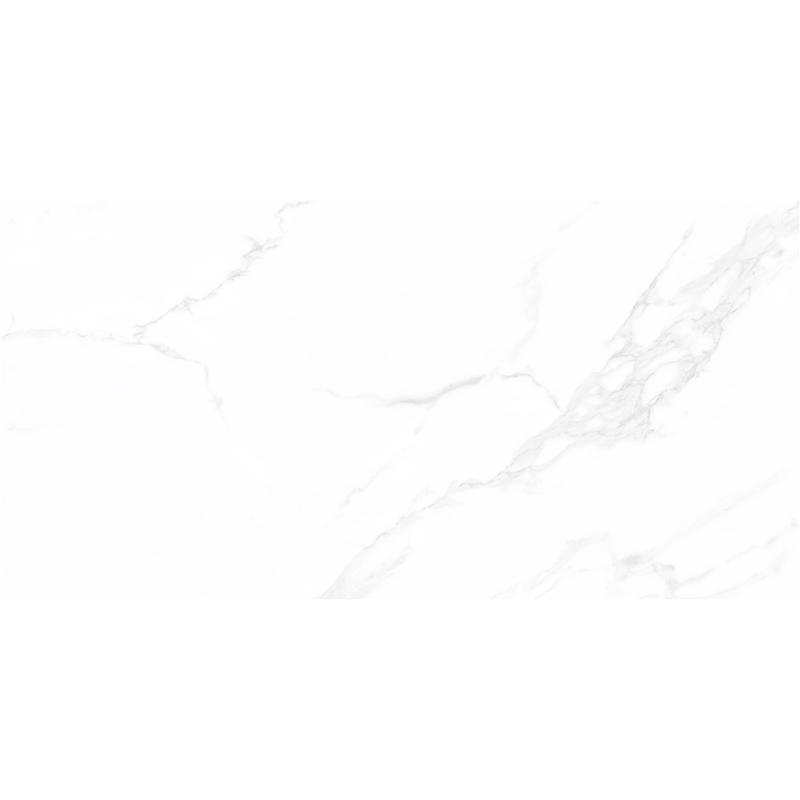 X1PA91801-6H伊维萨白