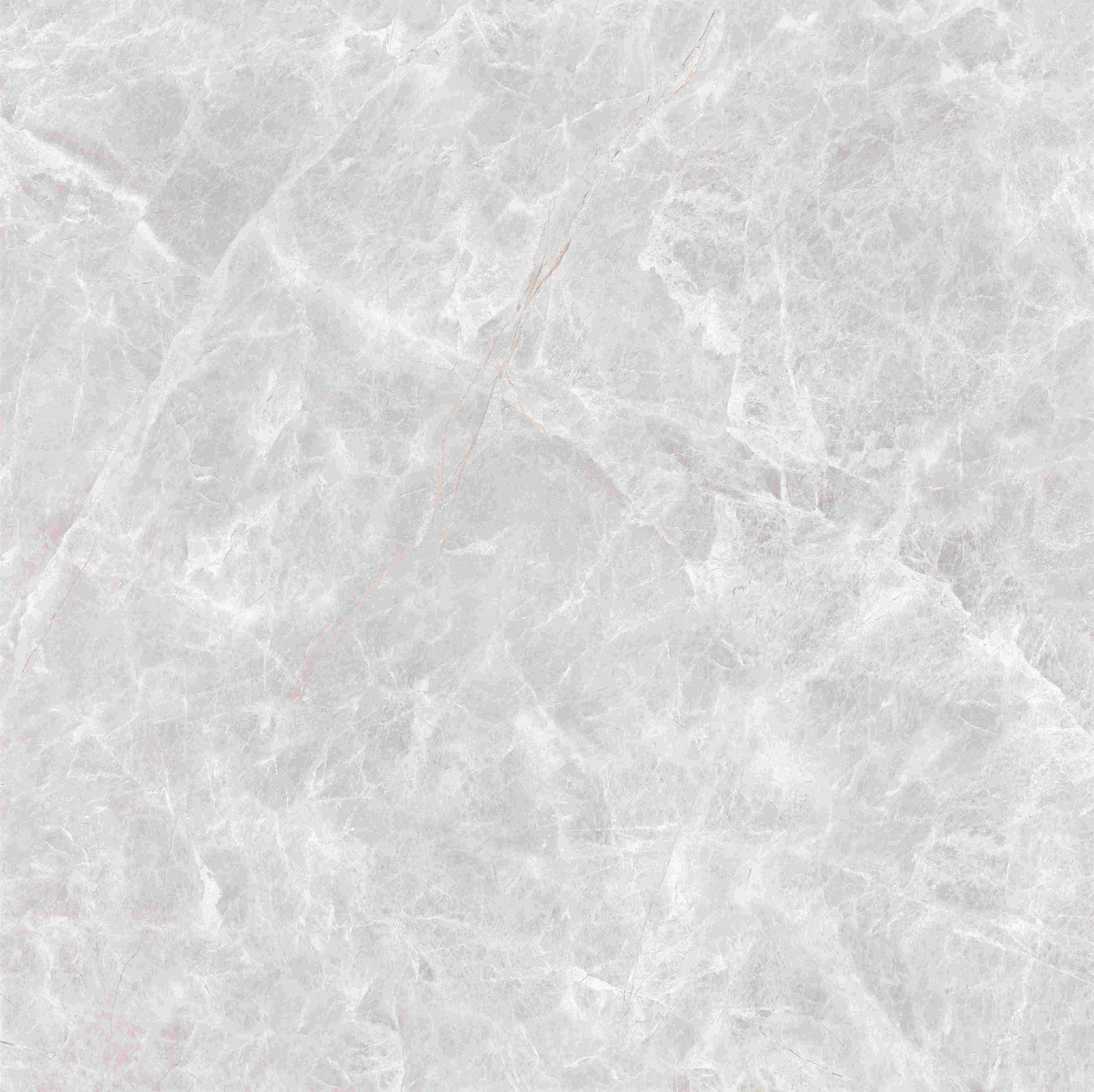 X1PA805151北極灰