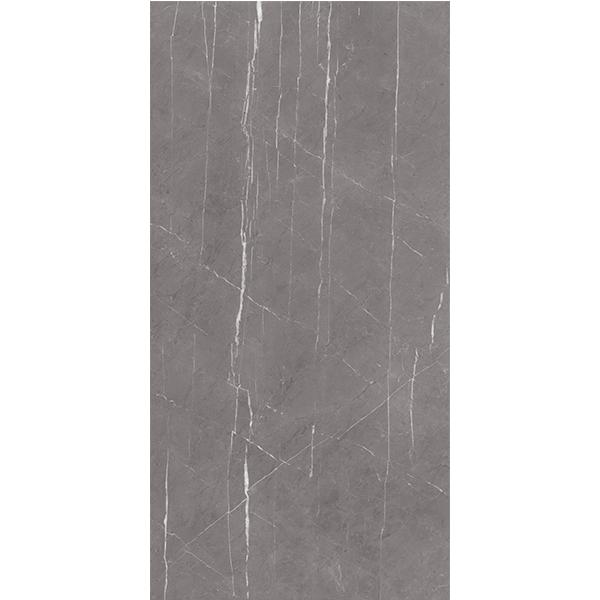 X2AM61208L 加里奧灰