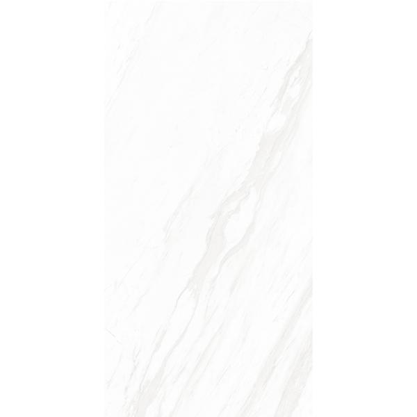 X1TQ8402 圣安娜白