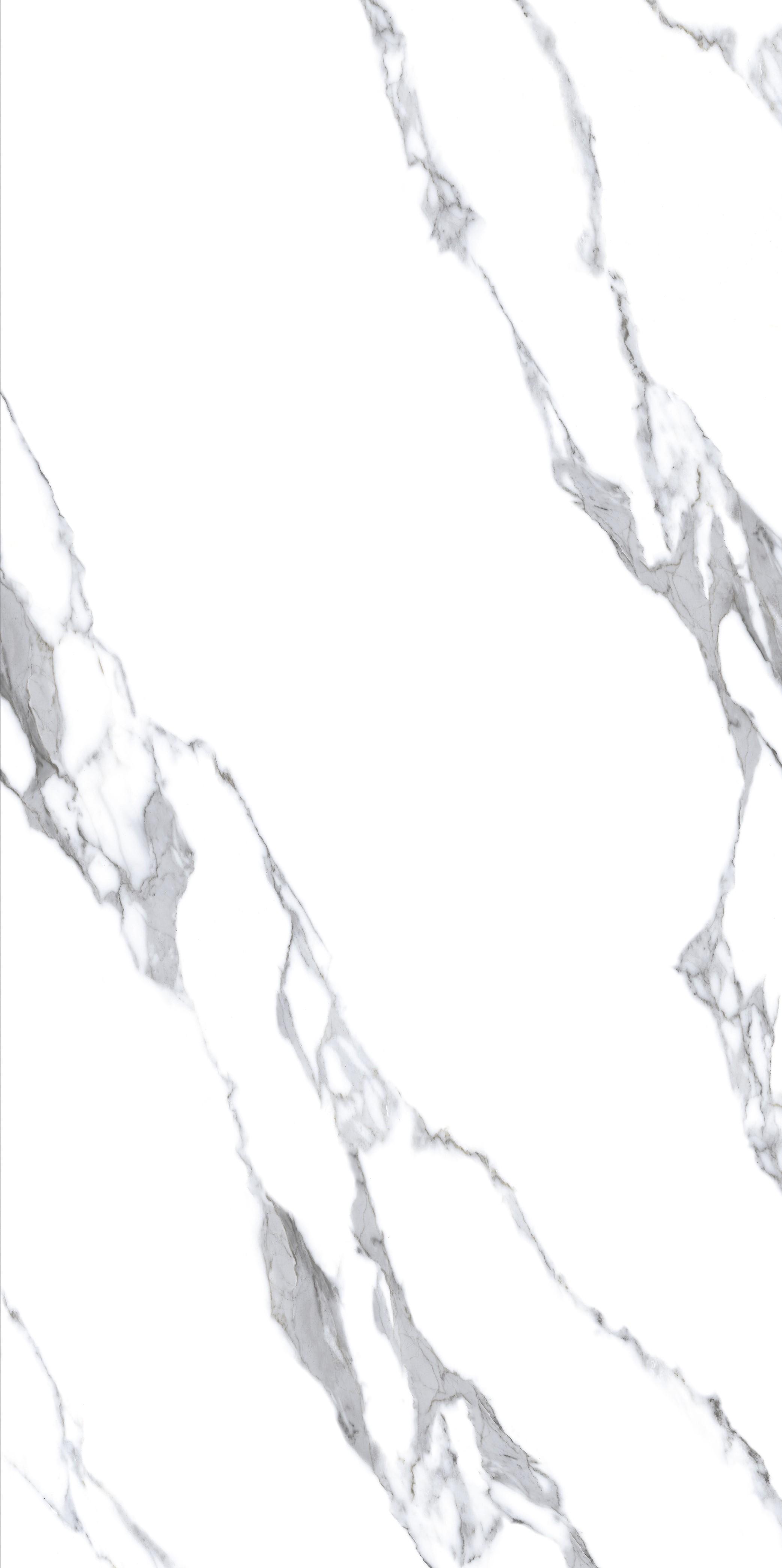 TA240908L-天山雪