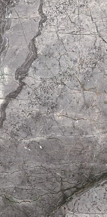 TA240915L-特菲利灰
