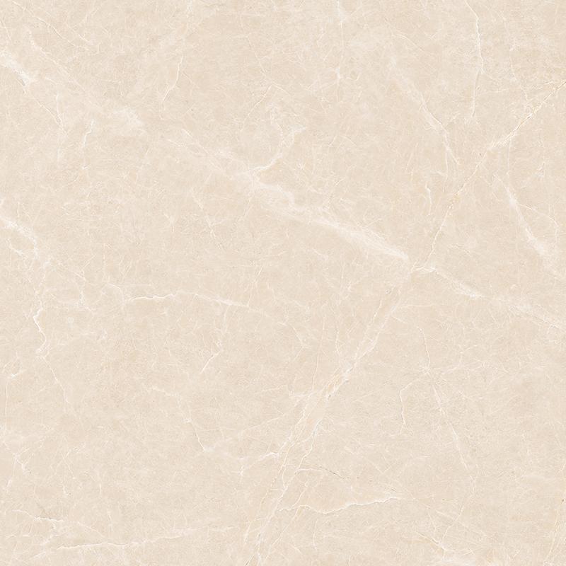 H1PA61206白玉兰