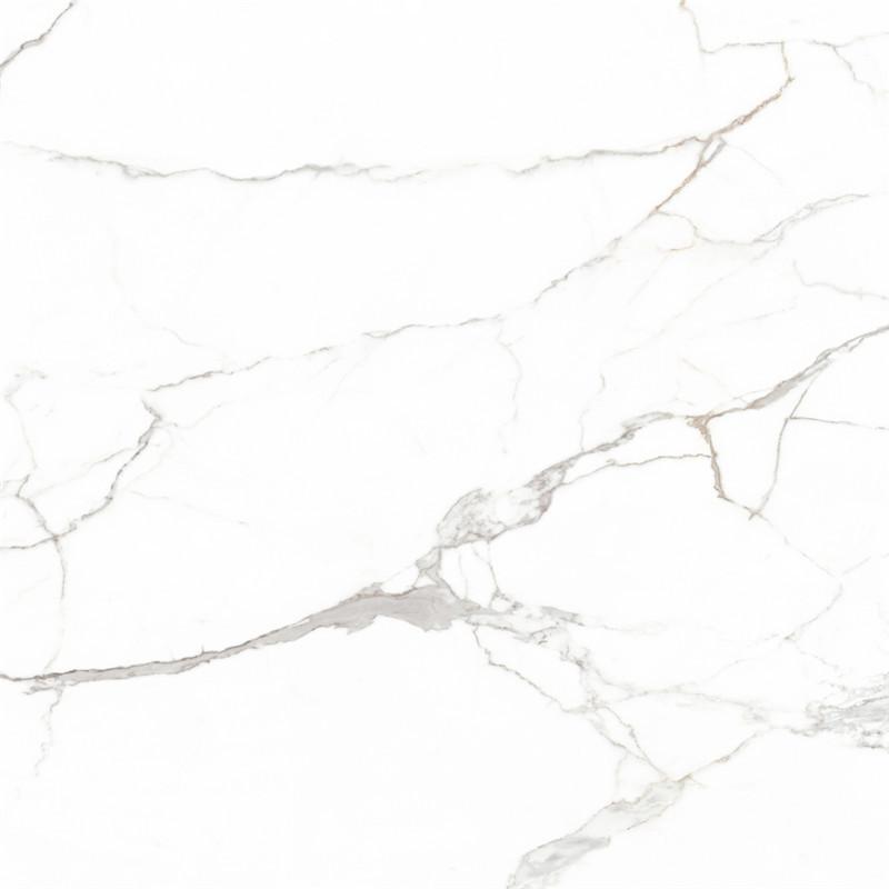 H1CPF9001顶级雪花白