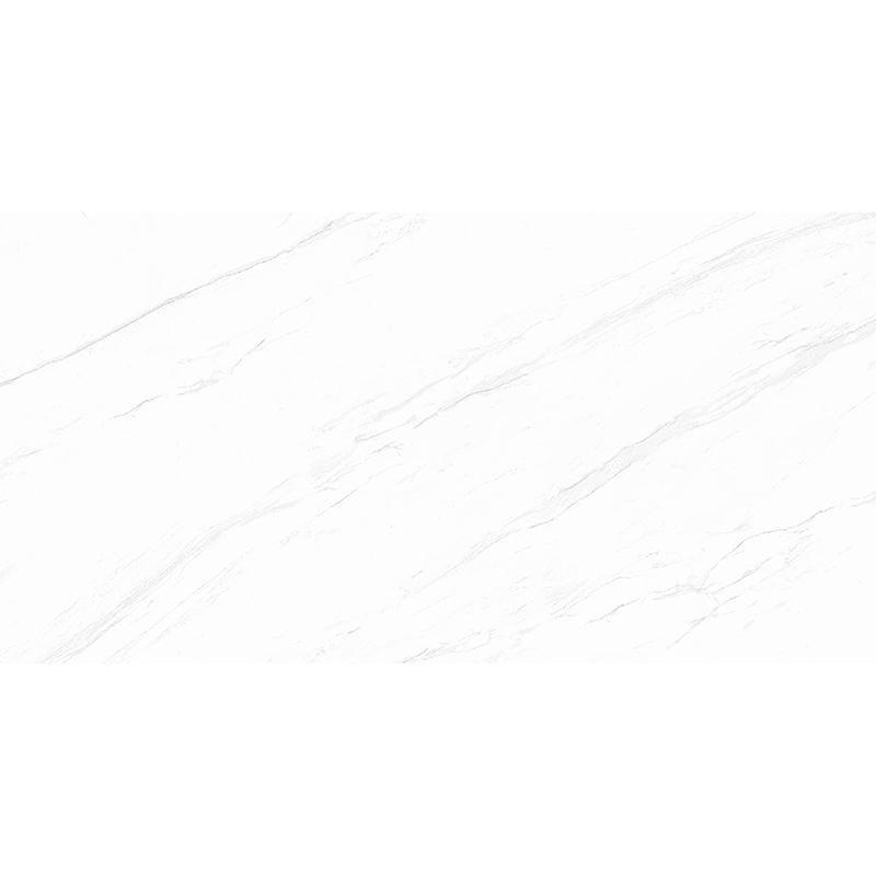 H1TP12603道格拉斯白