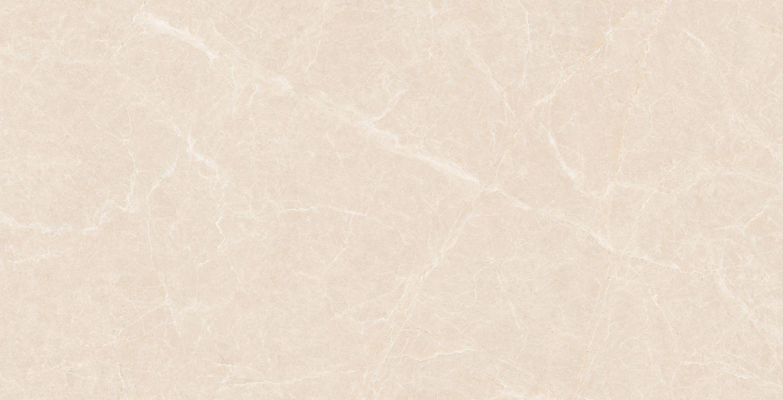 H1TP12616白玉蘭