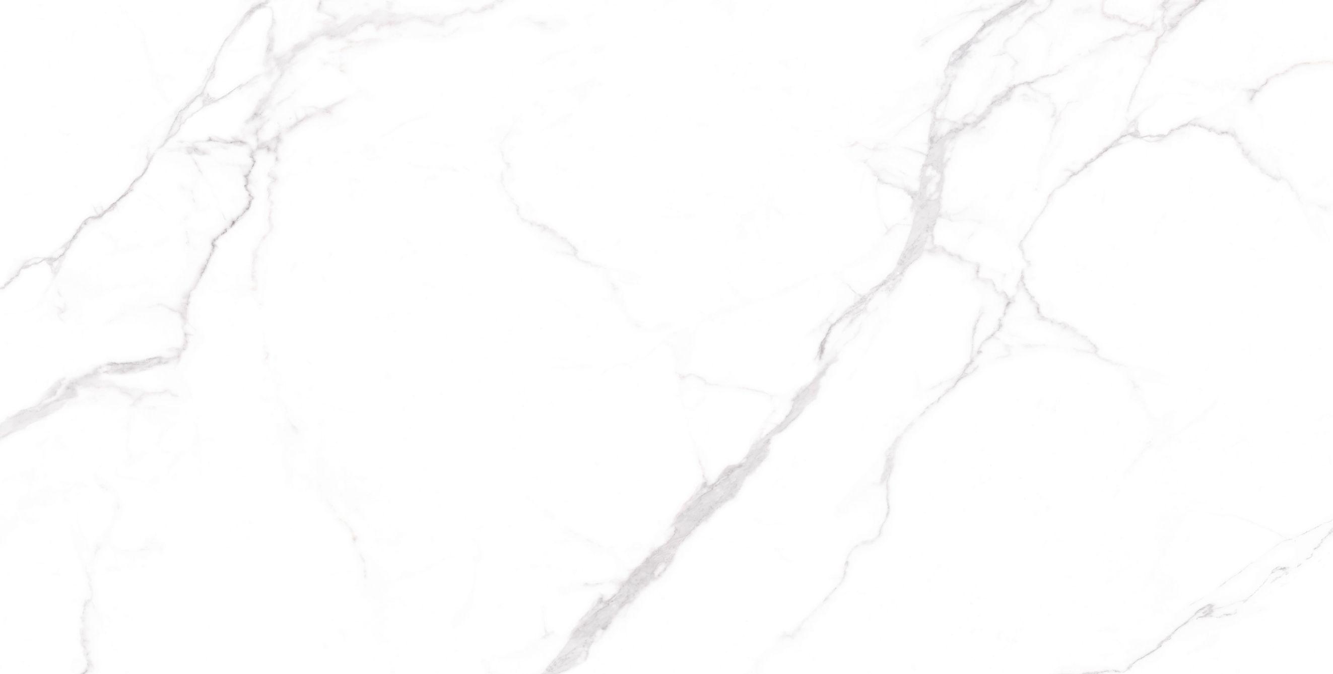 H1TP15702頂級雪花白
