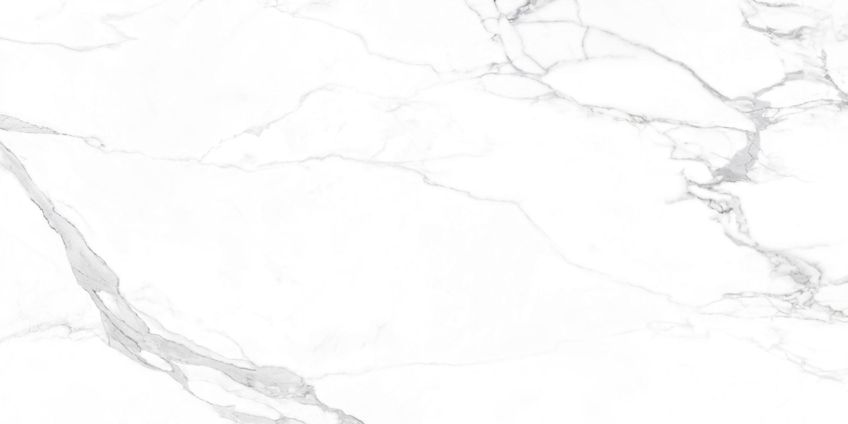 H1AM91801L伊维萨白