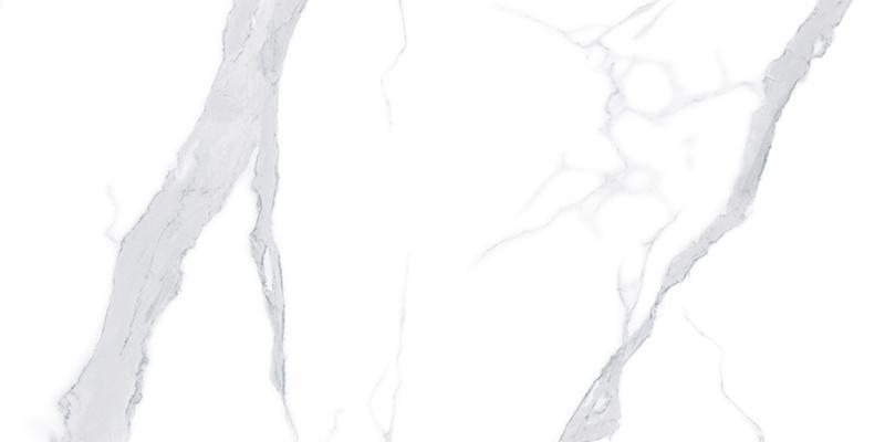HM2412B005 瑶池白